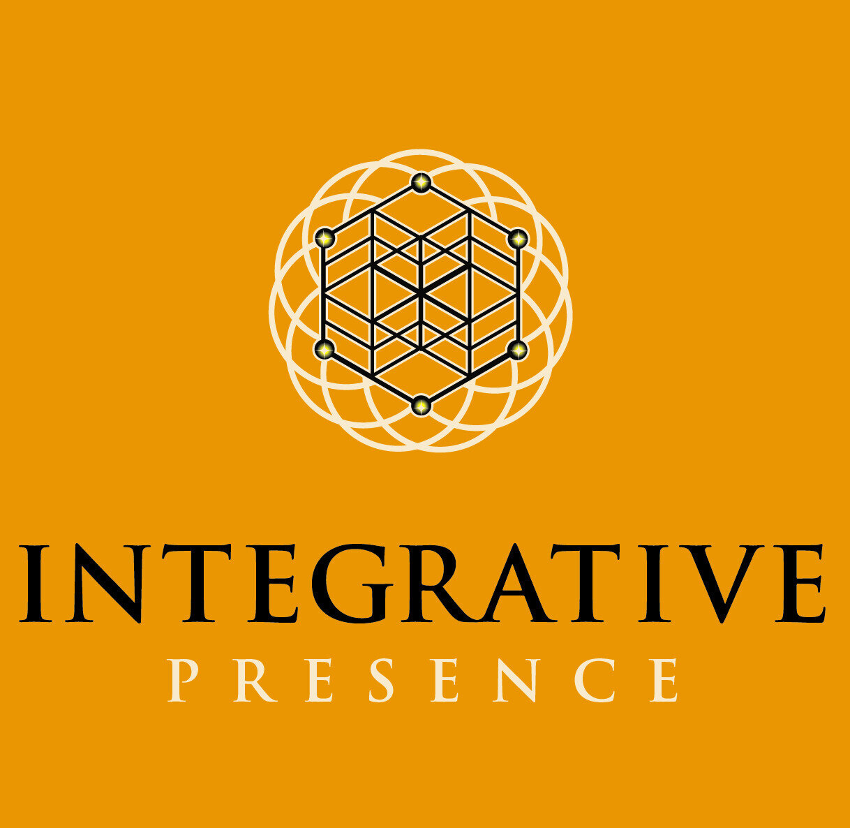 Masterclass - Integrative Presence Introduction
